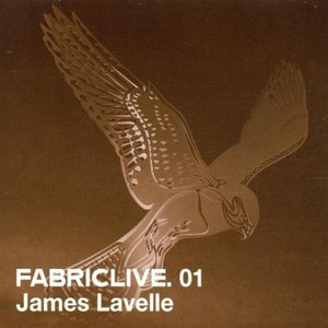 Image for 'Fabriclive 01: James Lavelle'