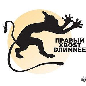 Image for 'Правый Хвост Длиннее'