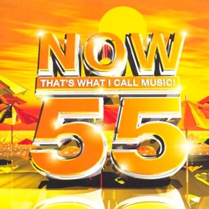 Image for 'Now That's What I Call Music 55 (disc 2)'