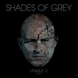 Image for 'Shades Of Grey (Akira Kiteshi)'
