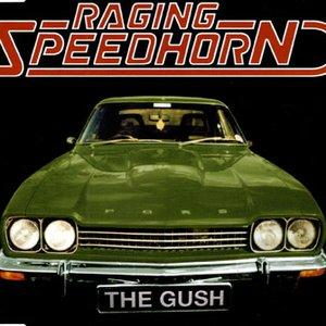 Bild für 'The Gush'
