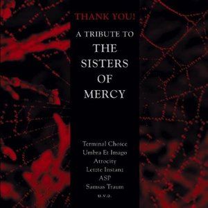 Image for 'Thank You! A Tribute to the Sisters of Mercy'