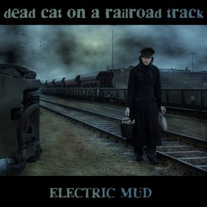 Bild för 'Dead Cat On a Railroad Track'