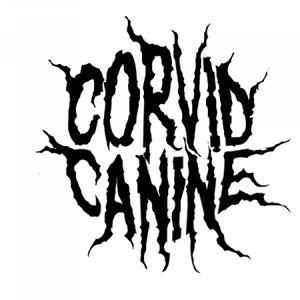 Image for 'Corvid Canine'