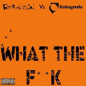 Image for 'Fatboy Slim vs. Funkagenda'