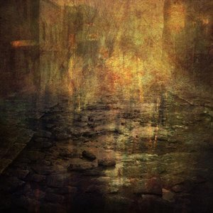 Bild für 'Les forêts juste avant la nuit'