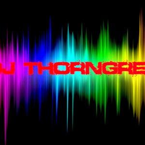 Bild för 'DJ tHORNGREN'