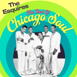 Image for 'The Best Of Chicago Soul'