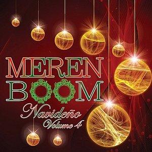 Image for 'Meremboom VOL. 4'