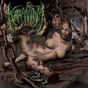 Image for 'The Art Of Female Sodomy'
