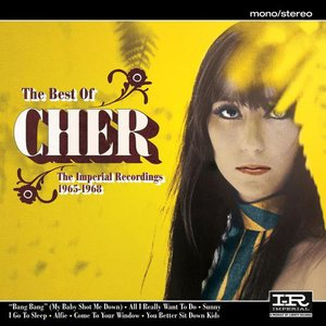 Bild för 'The Best of Cher'