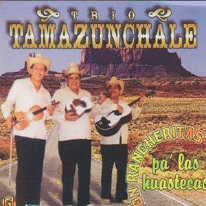 Image for 'Trio Tamazunchale'
