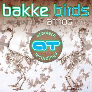 Image for 'Birds - Single'