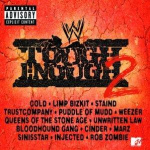 Bild för 'WWF Tough Enough 2'