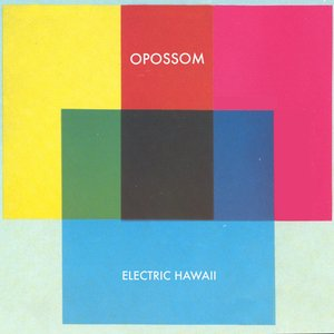 Image for 'ELECTRIC HAWAII'
