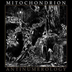 Image for 'Antinumerology'