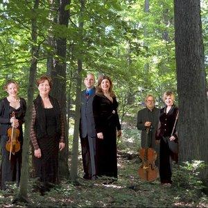 Image for 'Brandywine Baroque: Cynthia Freivogel, Karen Flint and Douglas McNames'
