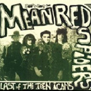 Imagen de 'Last of the Teen Icons'