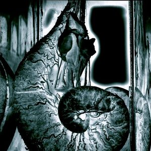 Image for 'Nebula Karbenogg'