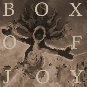 Image for 'Box Of Joy'