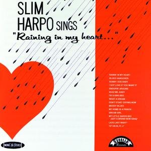 Image for 'Sings Raining In My Heart'