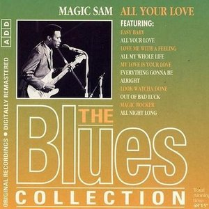 Immagine per 'The Blues Collection #21: All Your Love'