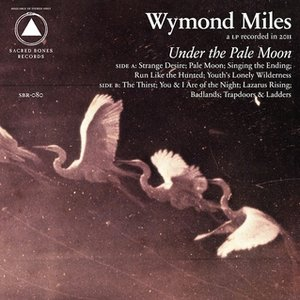Image for 'Under the Pale Moon'