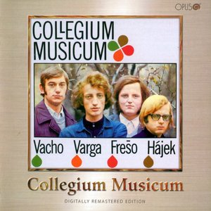 Image for 'Collegium Musicum'