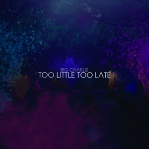 Image for 'Too Little Too Late'