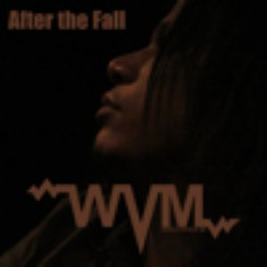 Image for 'After the Fall'