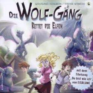 Image for 'Vol. 6 - Rettet Die Elfen!'