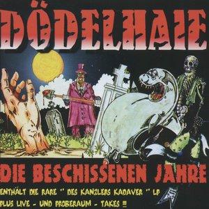 Image for 'Die beschissenen Jahre'