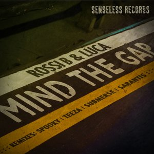 Image for 'Mind the Gap'