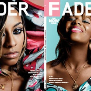 Image for 'The Fader'