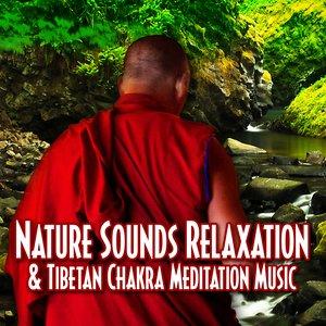 Image for 'Nature Sounds Relaxation & Tibetan Chakra Meditation Music'