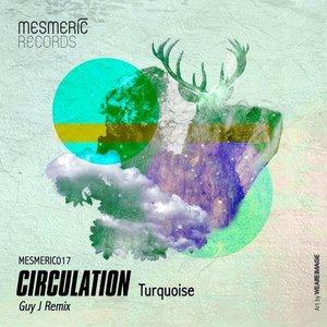 Bild für 'Turquoise (Guy J Remix)'