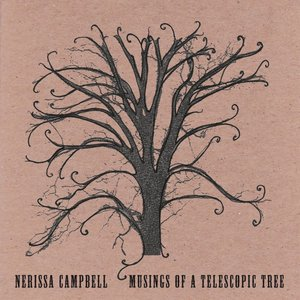 Image for 'Musings Of A Telescopic Tree'
