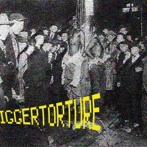 Bild för 'NIGGERTORTURE'