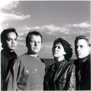 Bild für 'Pixies'