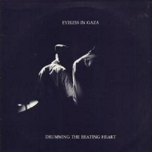 Image for 'drumming the beating heart'