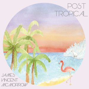 Image for 'Post Tropical'