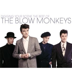 Image pour 'Digging Your Scene: The Best of The Blow Monkeys'