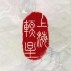 Image for '上海软星'