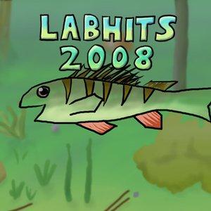 Bild för 'Labhits 2008'