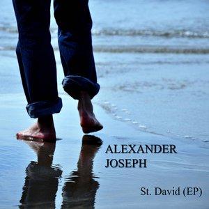 Bild für 'St. David'