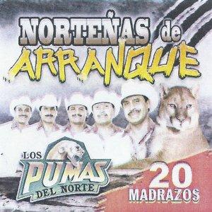Image pour 'Nortenas De Arranque - 20 Madrazos'