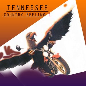 Image for 'Country Feeling, Vol.1'