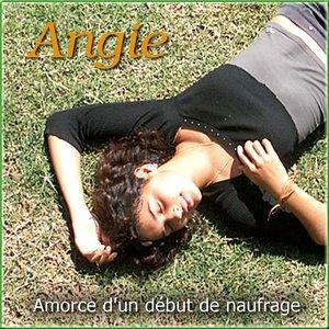 Image for 'Amorce d'un début de naufrage'
