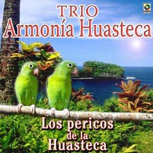 Image for 'Los Pericos De La Husteca'