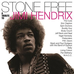 Image pour 'Stone Free: A Tribute to Jimi Hendrix'